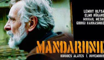 Mandariinid_veebipilt